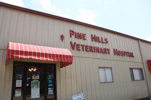 Veterinarian in West Monroe, LA